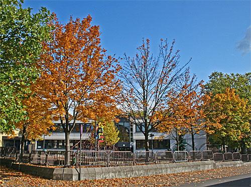Grundschule Bergstraße - Foto: A.Hell