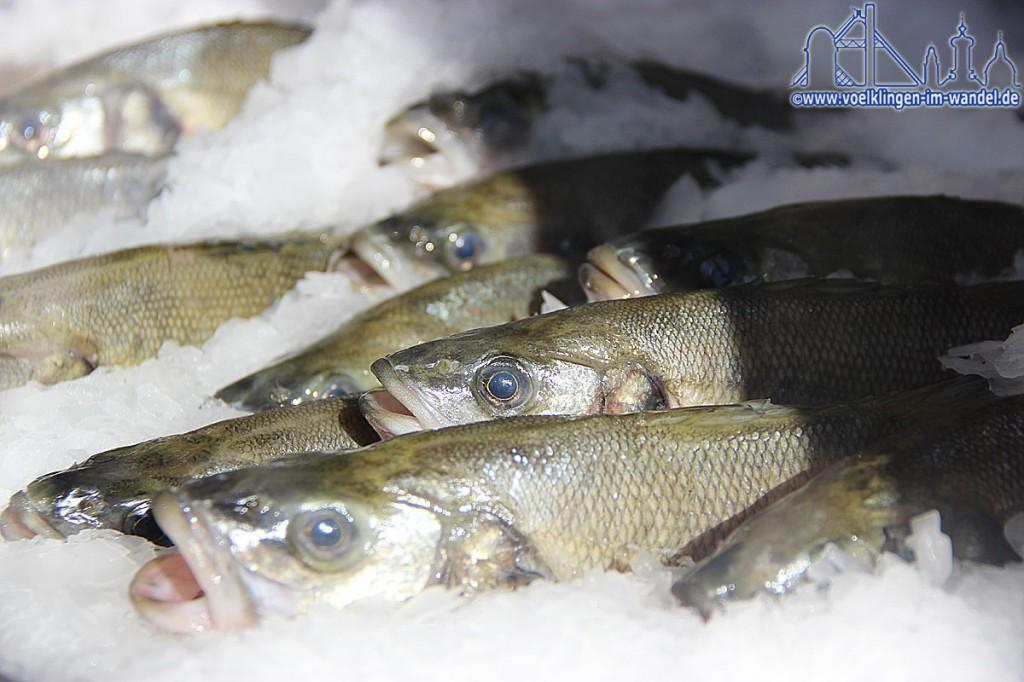 Meeresfisch in der Auslage