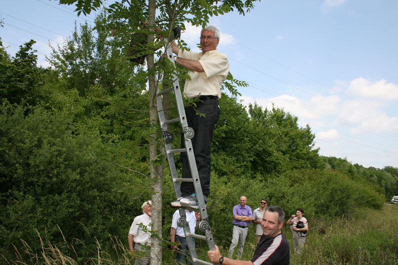 OB Klaus Lorig hängt einen Nistkasten auf (Foto: Stadt)