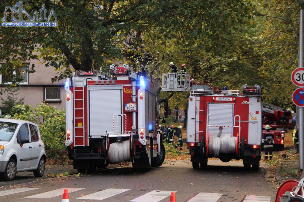 Wegen herabfallenden Ästen musste die Stadionstraße vollgesperrt werden (Foto: Hell)