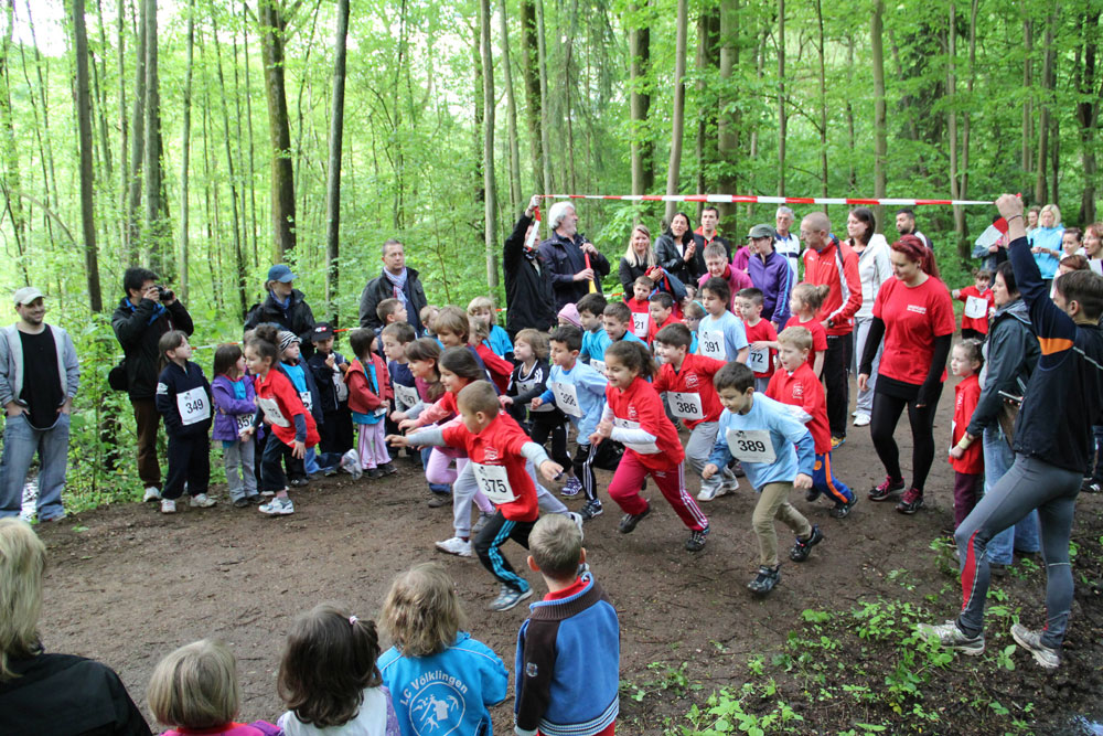 Start zur Kita-Waldlaufmeistersch 2014 (Foto: Stadt/VHS)
