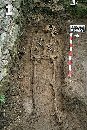 Fundstelle 370; Skelett eines erwachsenen Individuums, nahezu vollständig erhalten, aus dem Bereich zwischen Mittelaltar und Barockchor.