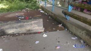 Das verunreinigte Areal unter der Straßenbrücke (Foto: AGSS)