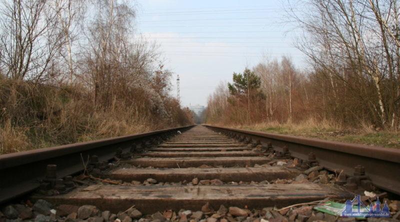 Das stillgelegte Gleis der Warndtstrecke (Foto: Hell/Archiv)