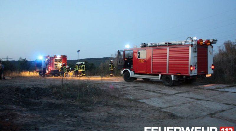 Wiesenbrand in Wehrden (Foto: FFW Völklingen)