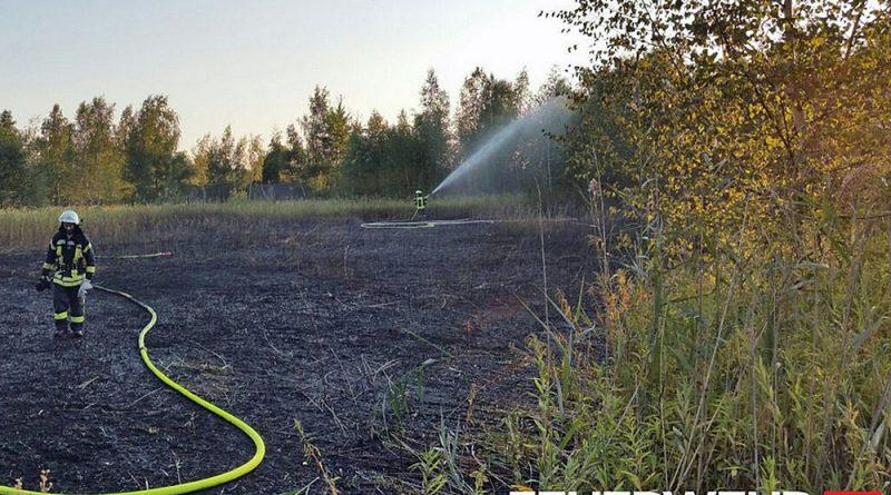 Flächenbrand auf Bergehalde (Foto: Feuerwehr Völklingen)