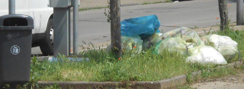 Liegengebliebener Müll: Blaue Säcke oder unsachgemäß befüllte gelbe Säcke bleiben liegen (Foto: Privat)