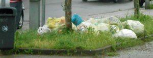 Der Müll wird wieder mehr, ähnlich der Broken-Windows-Theorie (Foto: Privat)