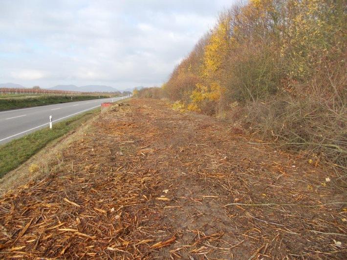 Freie Sicht am Ebenberg, das könnte an der A620 bei Völklingen Schule machen! (Foto: Polizeidirektion Landau)